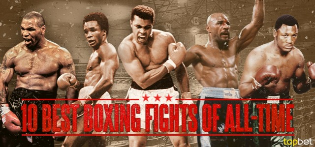 Up and coming boxerstoday!