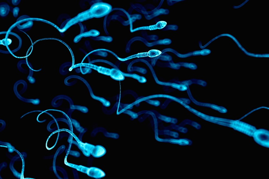 The Destruction of the Races!Sperm counts in the West plunge by 60% in 40 years as 'modern life' damages men's health